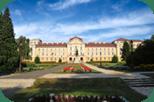 Executive MBA programok a Szent István Egyetemen